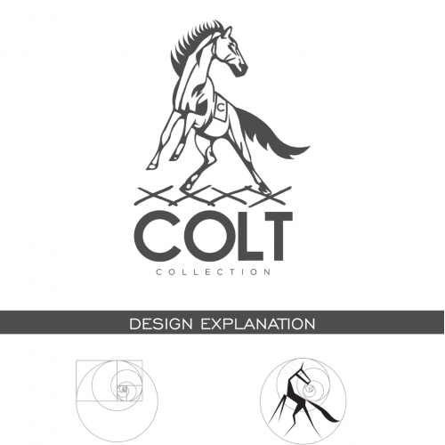 Logo Modernization for Brand Identity Development